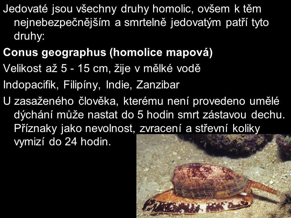 Jedovaté jsou všechny druhy homolic, ovšem k těm nejnebezpečnějším a smrtelně jedovatým patří tyto druhy: Conus geographus (homolice mapová) Velikost
