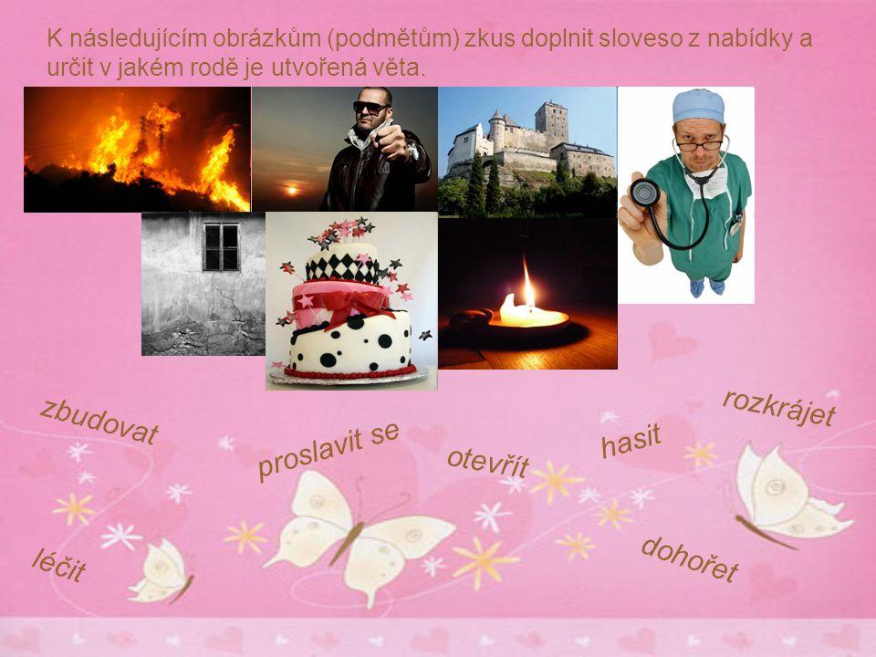 K následujícím obrázkům (podmětům) zkus doplnit sloveso z nabídky a určit v jakém rodě je utvořená věta.