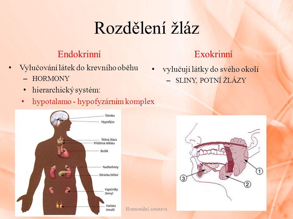 Pohlavní žlázy Mužské pohlavní žlázy Varlata(testes): – v Leydigových buňkách produkce mužského pohlavního hormonu = TESTOSTERON Testosteron: rozvoj a růst pohlavních orgánů vývoj druhotných pohlavních znaků podporuje tvorbu bílkovin urychluje zánik růstových chrupavek Ženské pohlavní žlázy Vaječníky(ovaria): – v Graafově folikulu produkce ženského pohlavního hormonu = ESTROGEN Estrogen: růst a vývoj pohlavních orgánů vývoj druhotných pohlavních znaků vzrůst děložní sliznice a její obnovení po předchozí menstruaci Progesteron: tvořen ve žlutém tělísku umožňuje život oplozeného vajíčka a další Hormonální soustava18 Kde se vytváří pohlavní hormony.