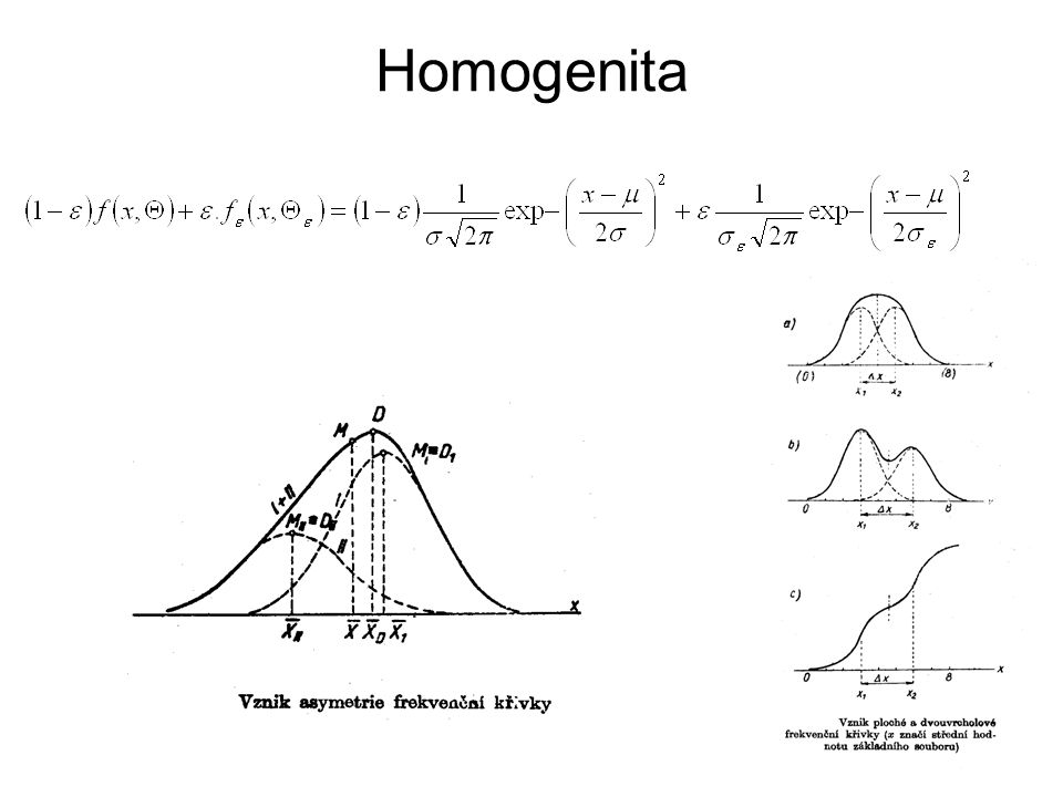 Homogenita