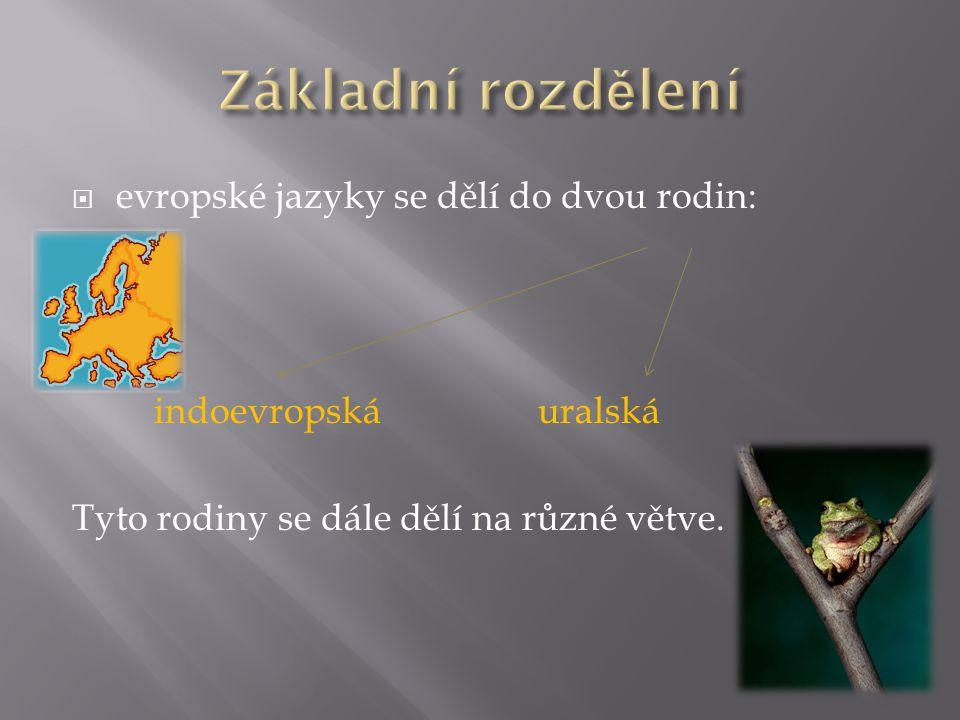  evropské jazyky se dělí do dvou rodin: indoevropskáuralská Tyto rodiny se dále dělí na různé větve.