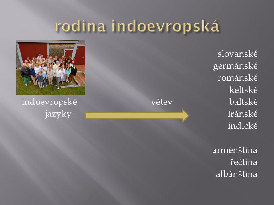 indoevropské jazyky slovanské germánské románské keltské větevbaltské íránské indické arménština řečtina albánština