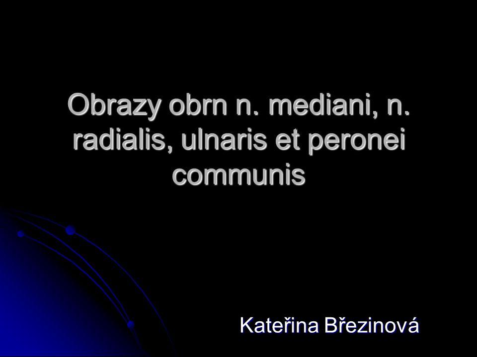 Obrazy obrn n. mediani, n. radialis, ulnaris et peronei communis Kateřina Březinová