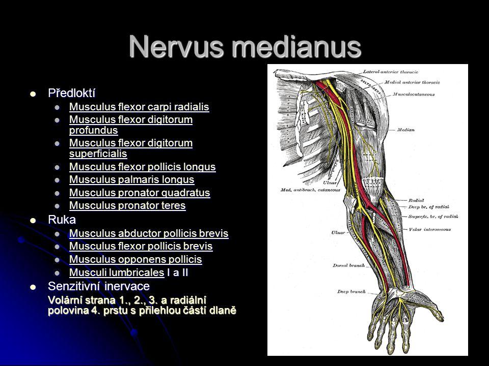 Příčiny Trauma nebo otlak nervu v loketní krajině hlavně v sulcus n.ulnaris (opírání o loket) Trauma nebo otlak nervu v loketní krajině hlavně v sulcus n.ulnaris (opírání o loket) Chronické působení tlaku v distálním úseku Chronické působení tlaku v distálním úseku Hyperextense zápěstí (motocyklisté, natěrači) Hyperextense zápěstí (motocyklisté, natěrači)