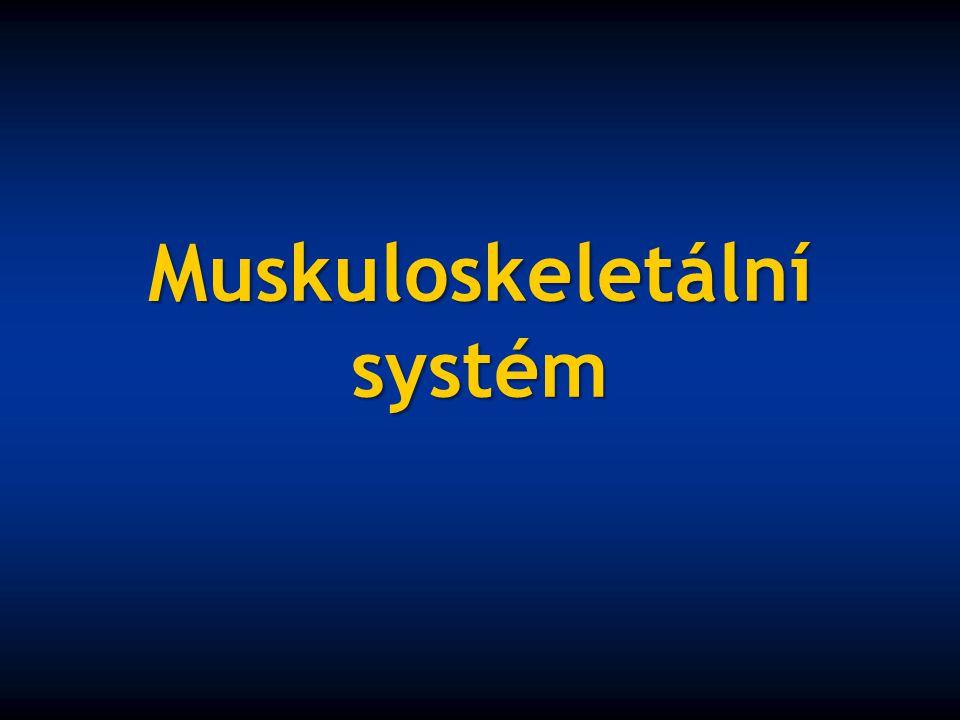 muskuloskeletální systém podpůrný a lokomoční systém svaly kostra šlachy klouby šlachové burzy