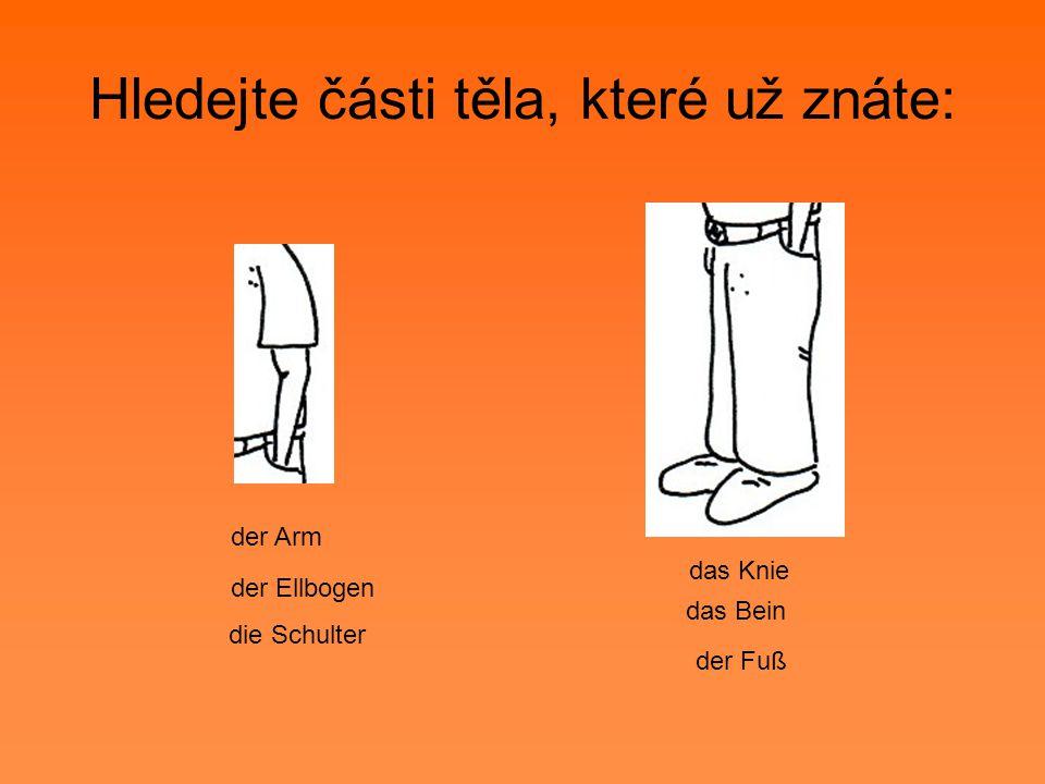 Hledejte části těla, které už znáte: das Bein das Knie der Fuß der Arm der Ellbogen die Schulter