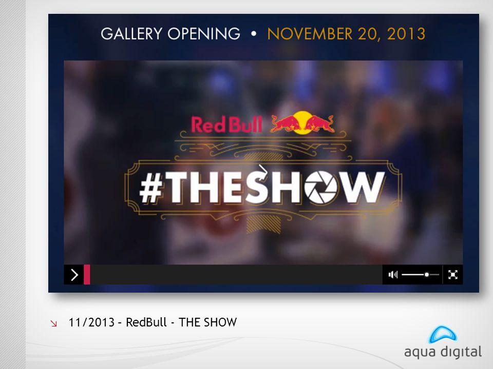 ↘ 11/2013 – RedBull - THE SHOW