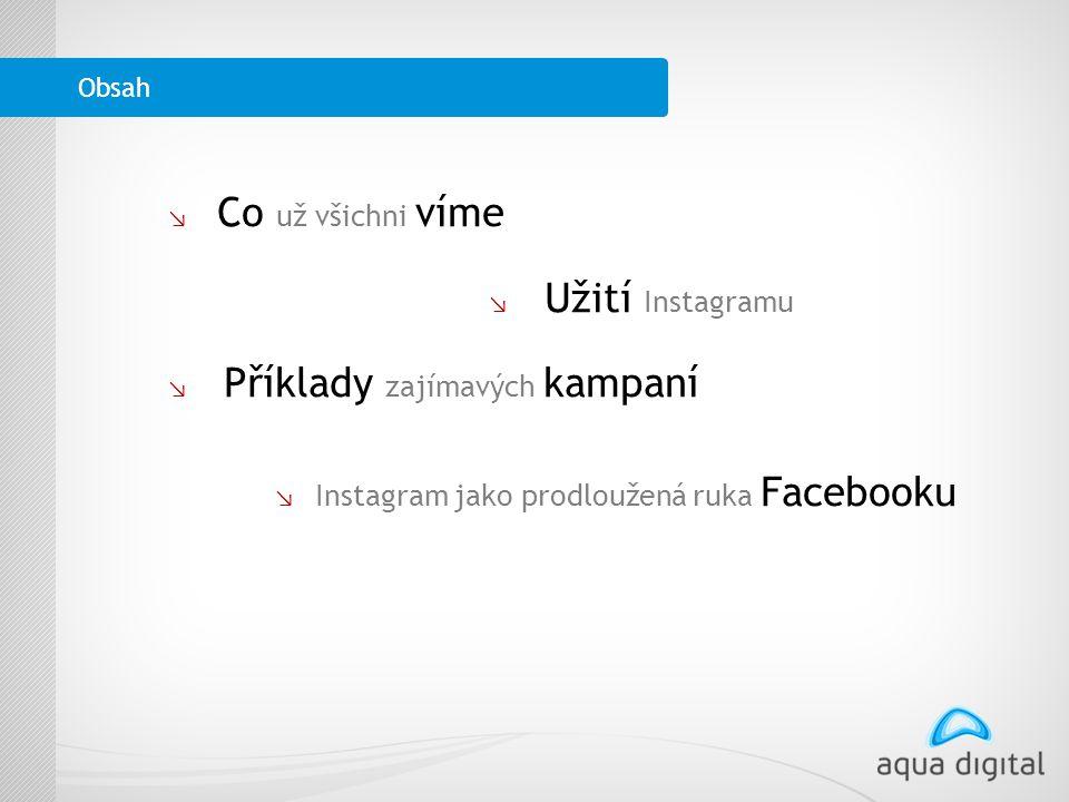 ↘ l Co už všichni víme ↘ L Užití Instagramu ↘ L Příklady zajímavých kampaní ↘ Instagram jako prodloužená ruka Facebooku Obsah
