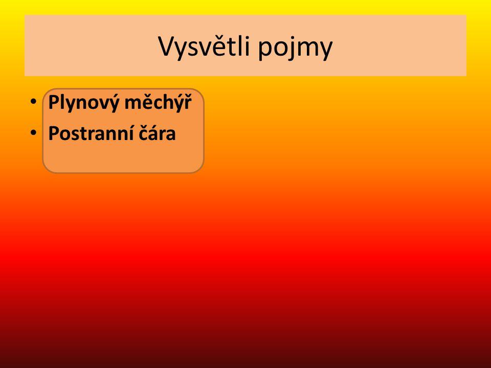 Spoj,co k sobě patří Pokryv těla a, páteř z obratlů, lebka Cévní soustava b, mozek, mícha, nervy Dýchací soustava c, ledviny, moč.měchýř Kostra d, žábry kryté skřelemi Nervová soustava e,dvoudílné srdce Vylučovací soustava f, šupiny