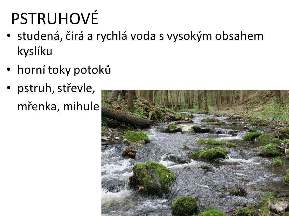 PSTRUHOVÉ studená, čirá a rychlá voda s vysokým obsahem kyslíku horní toky potoků pstruh, střevle, mřenka, mihule