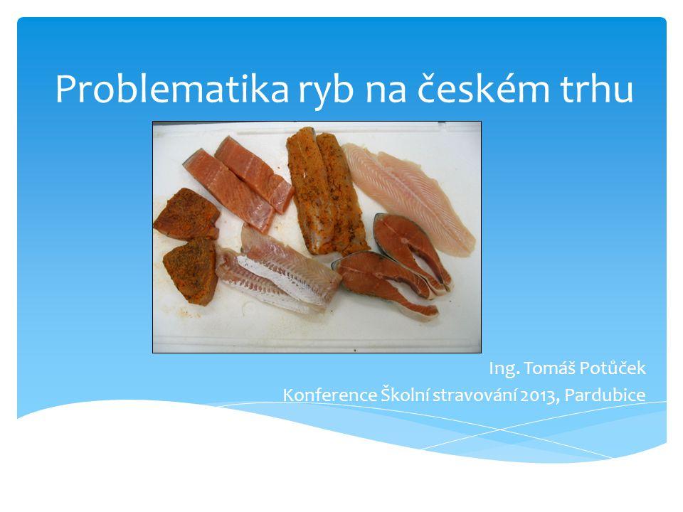 Problematika ryb na českém trhu Ing. Tomáš Potůček Konference Školní stravování 2013, Pardubice