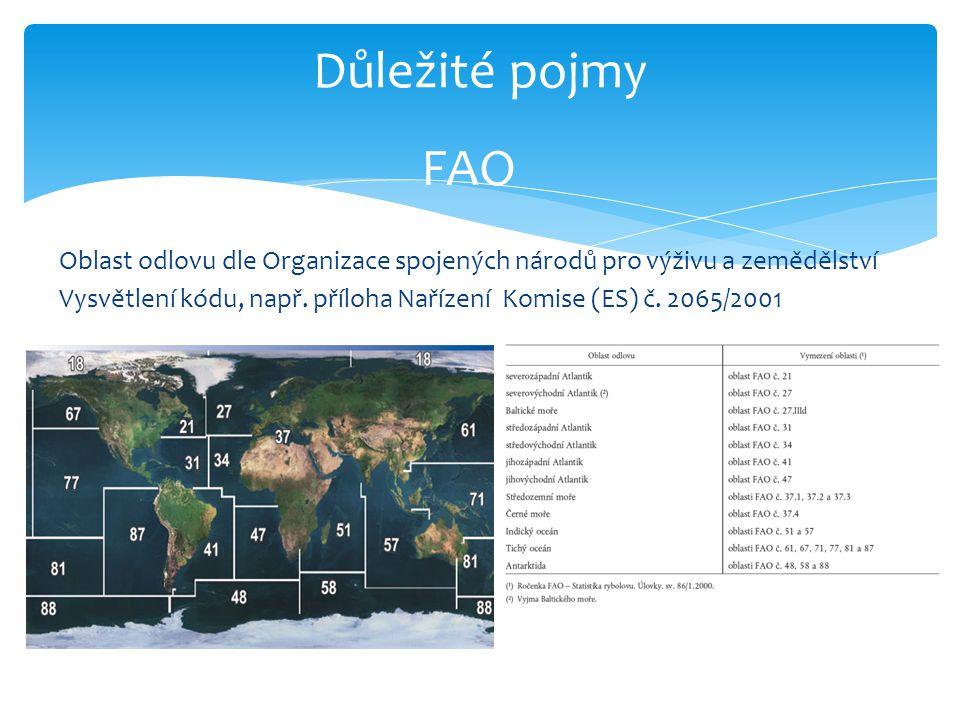 Důležité pojmy FAO Oblast odlovu dle Organizace spojených národů pro výživu a zemědělství Vysvětlení kódu, např. příloha Nařízení Komise (ES) č. 2065/