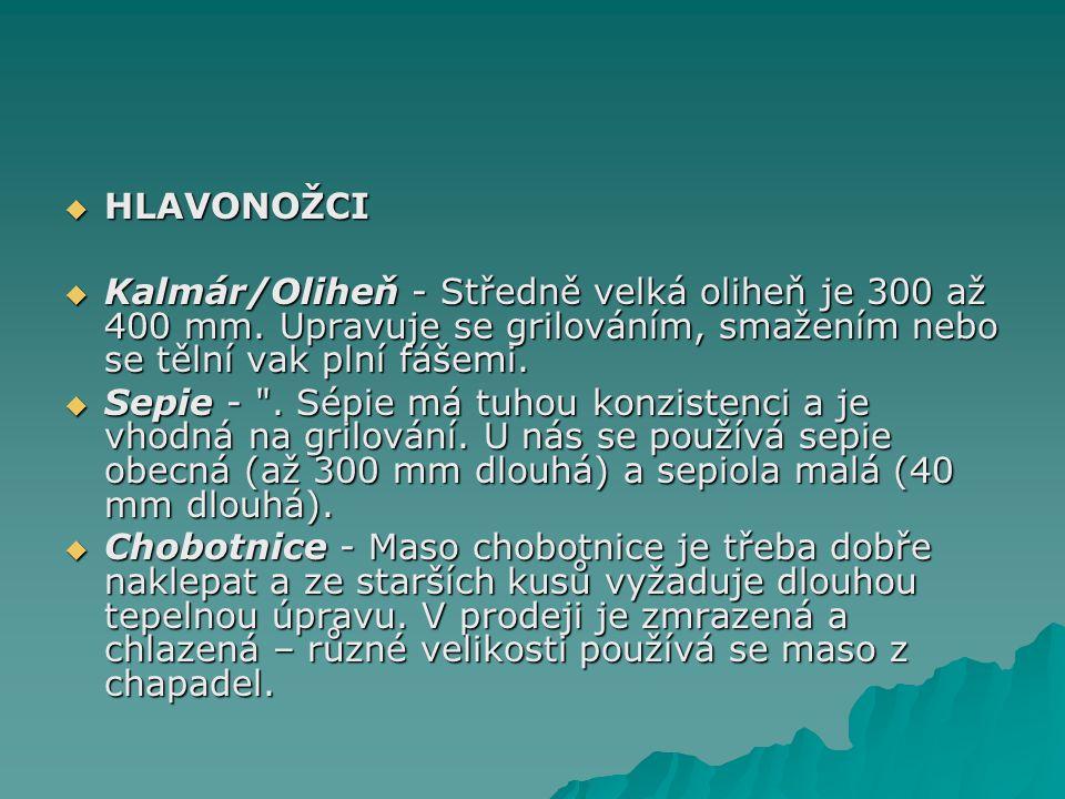  HLAVONOŽCI  Kalmár/Oliheň - Středně velká oliheň je 300 až 400 mm.