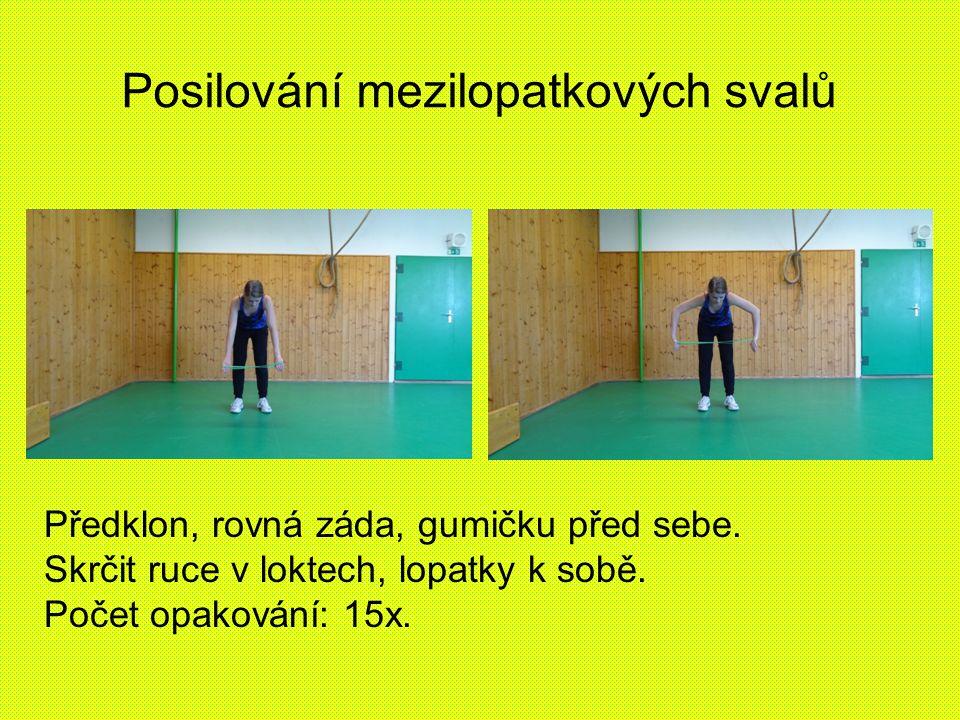Posilování mezilopatkových svalů Předklon, rovná záda, gumičku před sebe.