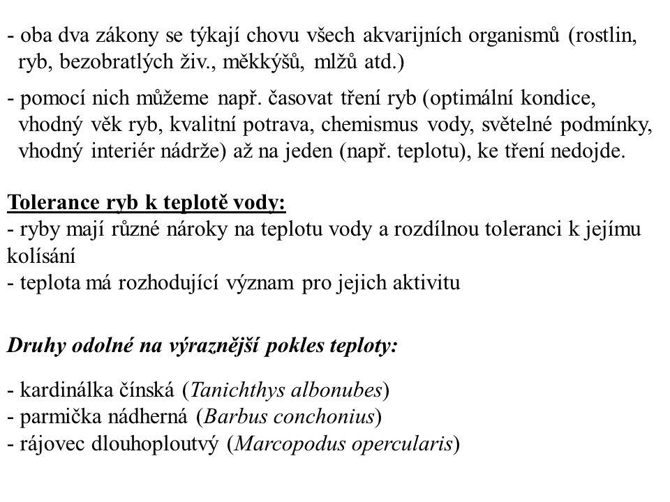 Tolerance ryb k teplotě vody: - ryby mají různé nároky na teplotu vody a rozdílnou toleranci k jejímu kolísání - teplota má rozhodující význam pro jejich aktivitu Druhy odolné na výraznější pokles teploty: - kardinálka čínská (Tanichthys albonubes) - parmička nádherná (Barbus conchonius) - rájovec dlouhoploutvý (Marcopodus opercularis) - oba dva zákony se týkají chovu všech akvarijních organismů (rostlin, ryb, bezobratlých živ., měkkýšů, mlžů atd.) - pomocí nich můžeme např.