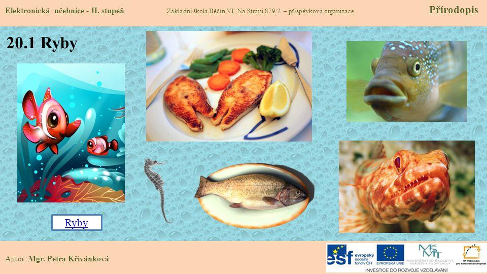 20.1 Ryby Elektronická učebnice - II.