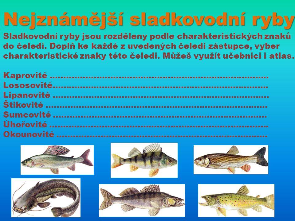 Nejznámější sladkovodní ryby Sladkovodní ryby jsou rozděleny podle charakteristických znaků do čeledí. Doplň ke každé z uvedených čeledí zástupce, vyb