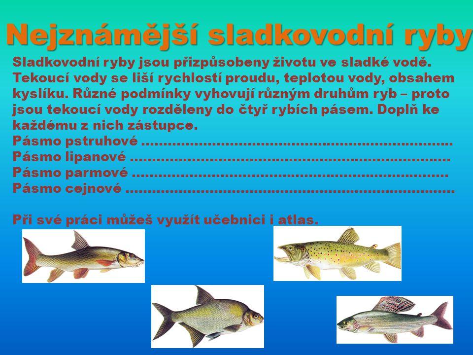 Nejznámější sladkovodní ryby Sladkovodní ryby jsou přizpůsobeny životu ve sladké vodě. Tekoucí vody se liší rychlostí proudu, teplotou vody, obsahem k