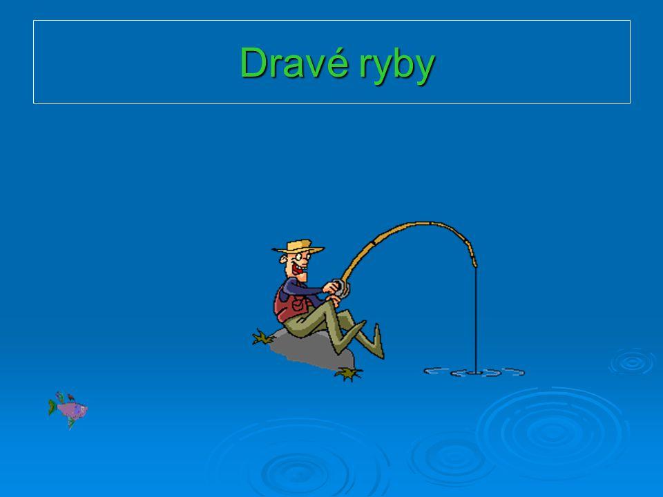 Ostnoploutví  Okoun říční  Až 4kg,délka do 60cm  Břišní ploutve blízko u sebe  Stojaté i tekoucí vody  Časté přemnožení = pomalý růst  Potrava:bezobratlí, drobné rybky
