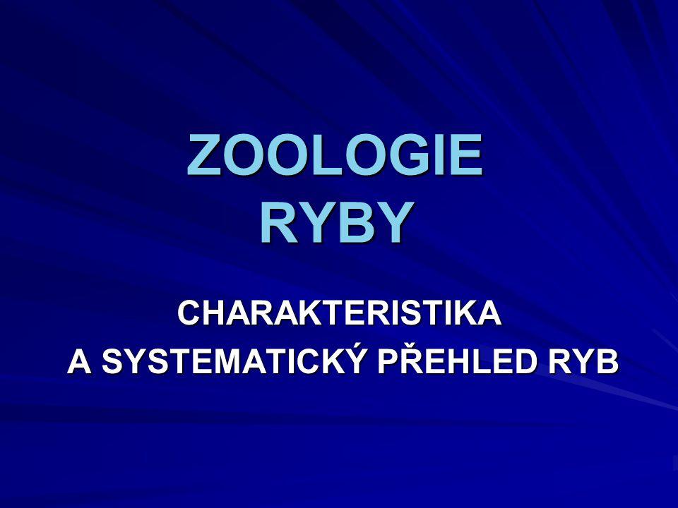 ZOOLOGIE RYBY CHARAKTERISTIKA A SYSTEMATICKÝ PŘEHLED RYB A SYSTEMATICKÝ PŘEHLED RYB