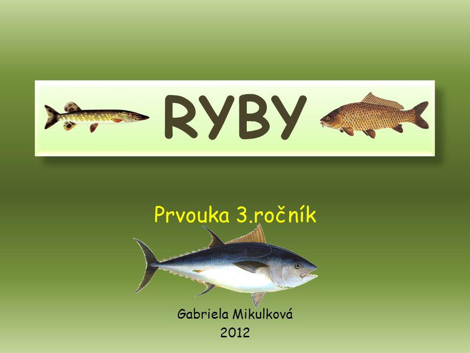 RYBY Prvouka 3.ročník Gabriela Mikulková 2012