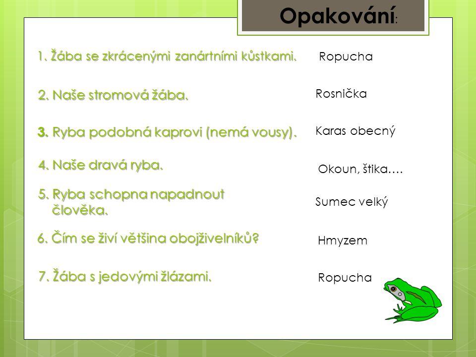 1.Žába se zkrácenými zanártními kůstkami. Ropucha 2.