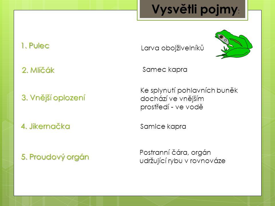 1. Žába se zkrácenými zanártními kůstkami. Ropucha 2. Naše stromová žába. 4. Naše dravá ryba. Okoun, štika…. 5. Ryba schopna napadnout člověka. Sumec