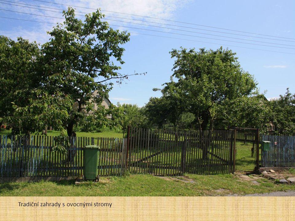 Tradiční zahrady s ovocnými stromy