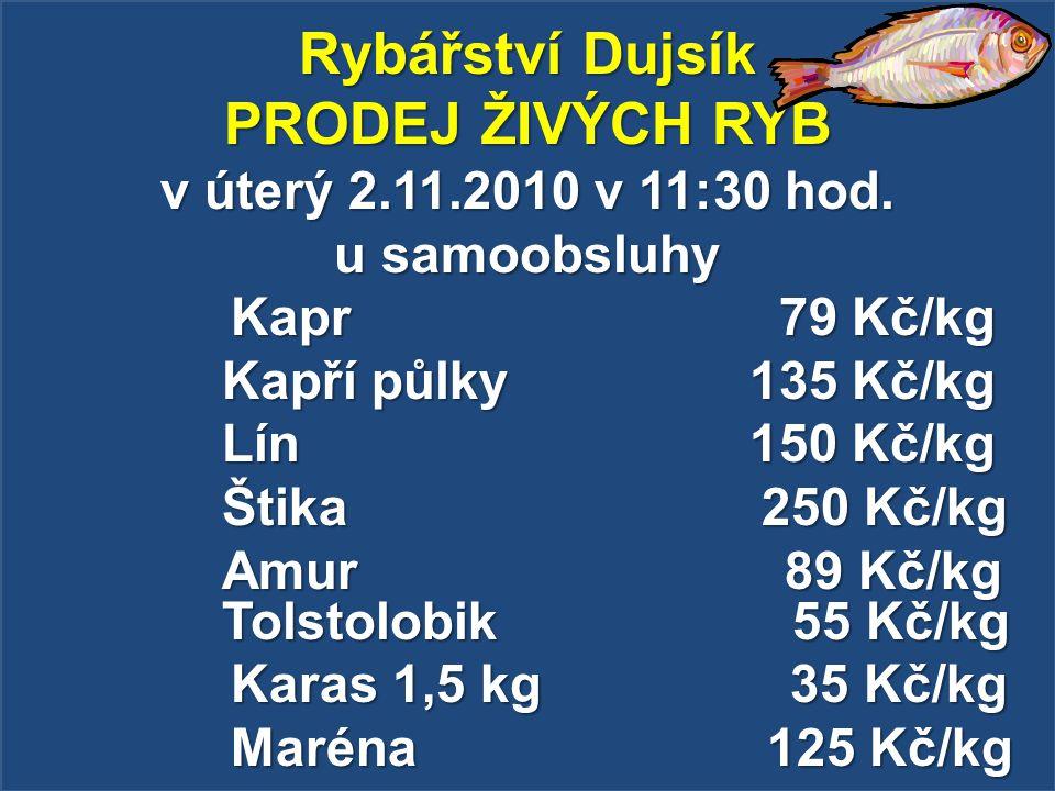 Rybářství Dujsík PRODEJ ŽIVÝCH RYB v úterý 2.11.2010 v 11:30 hod. u samoobsluhy Kapr 79 Kč/kg Kapr 79 Kč/kg Kapří půlky 135 Kč/kg Lín 150 Kč/kg Štika