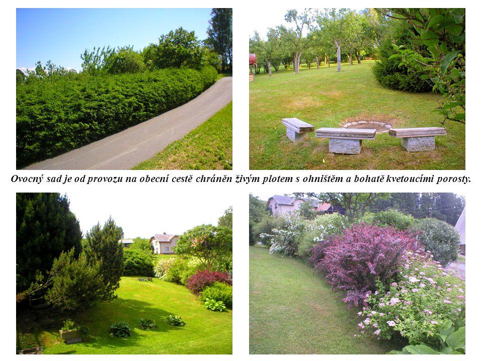 Ovocný sad je od provozu na obecní cestě chráněn živým plotem s ohništěm a bohatě kvetoucími porosty.