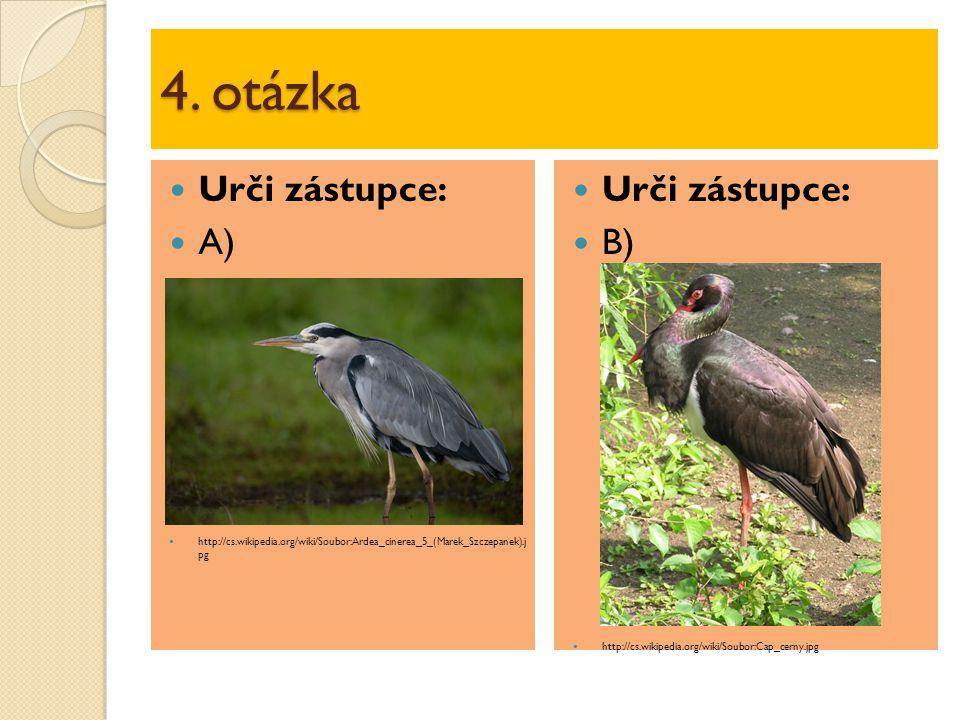 5.otázka Určení zástupce podle charakteristiky: Vodní pták s plovacími blánami.