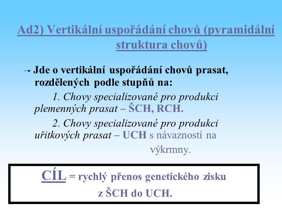Ad2) Vertikální uspořádání chovů (pyramidální struktura chovů) Jde o vertikální uspořádání chovů prasat, rozdělených podle stupňů na: 1. Chovy special