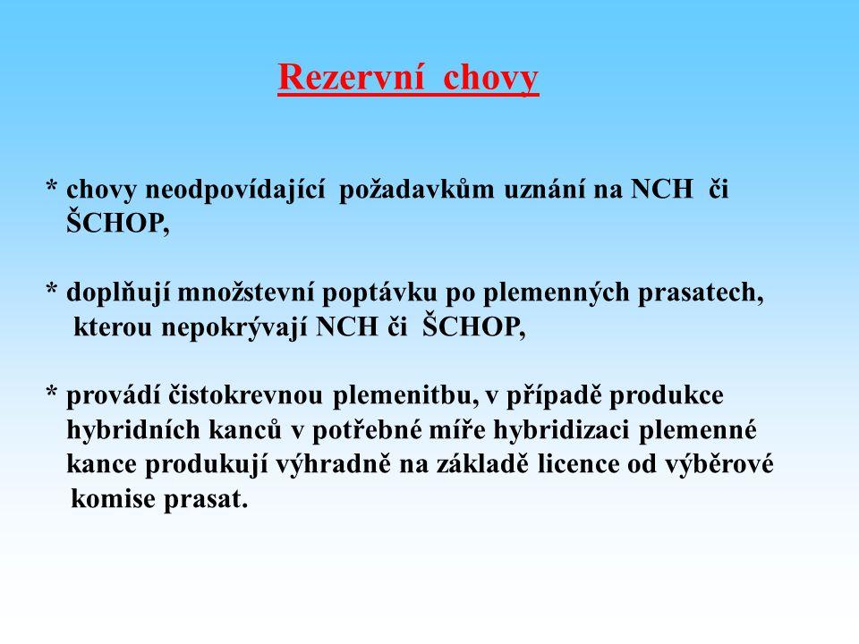 Rezervní chovy * chovy neodpovídající požadavkům uznání na NCH či ŠCHOP, * doplňují množstevní poptávku po plemenných prasatech, kterou nepokrývají NC