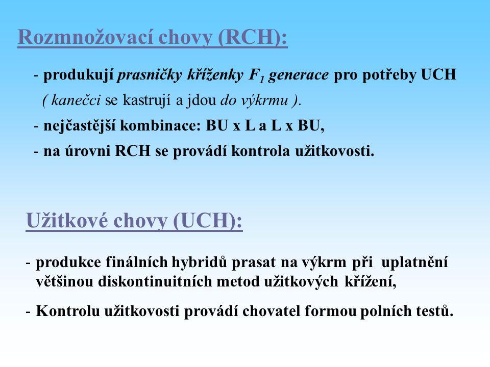 Rozmnožovací chovy (RCH): - produkují prasničky kříženky F 1 generace pro potřeby UCH ( kanečci se kastrují a jdou do výkrmu ). - nejčastější kombinac