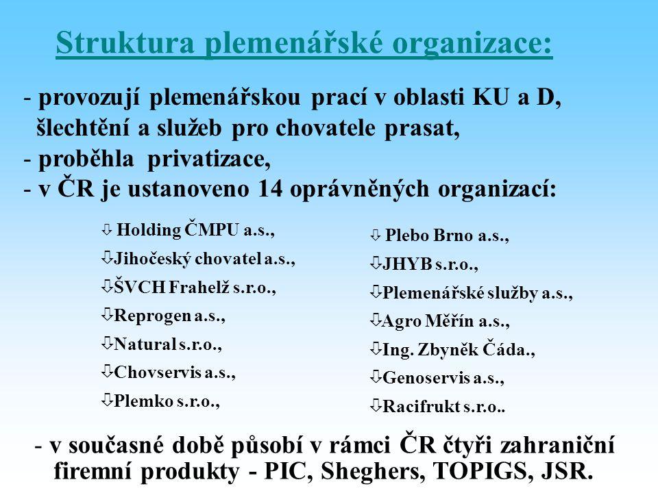 Struktura plemenářské organizace: - provozují plemenářskou prací v oblasti KU a D, šlechtění a služeb pro chovatele prasat, - proběhla privatizace, -