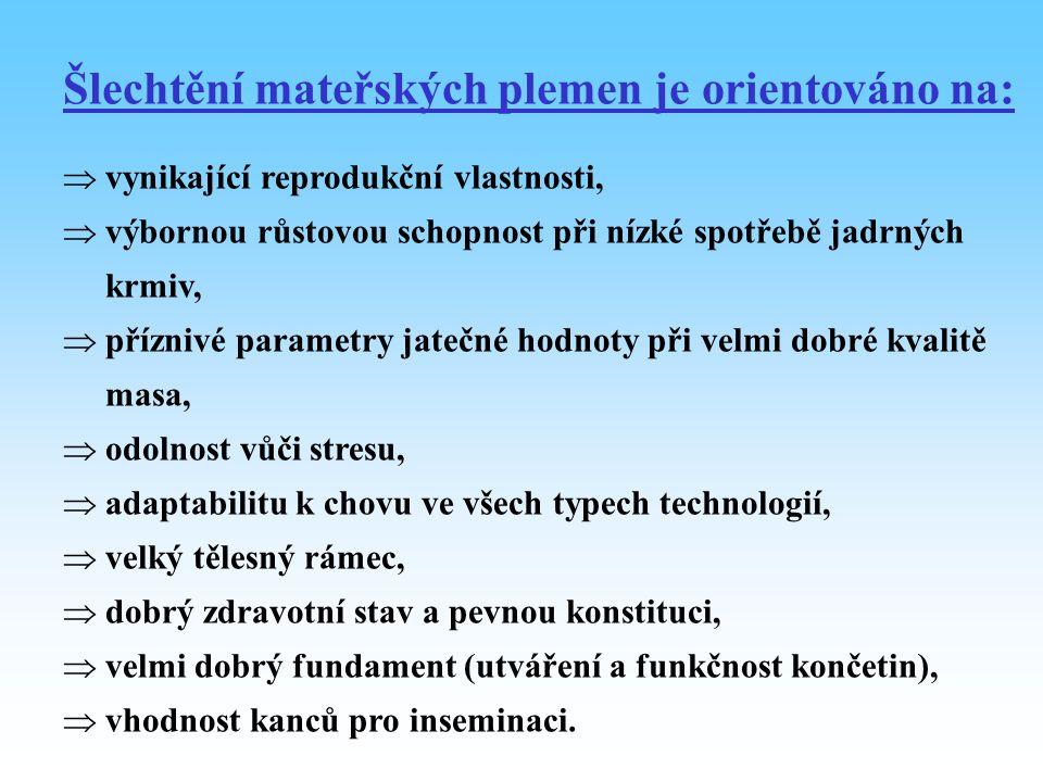 Otcovská plemena (pozice C) - plemena výrazně masného užitkového typu využívaná v ČR H, D, BL, Pn, ČVM, aj., či jejich syntetické linie.