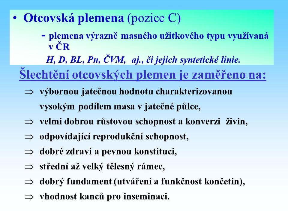 Otcovská plemena (pozice C) - plemena výrazně masného užitkového typu využívaná v ČR H, D, BL, Pn, ČVM, aj., či jejich syntetické linie. Šlechtění otc