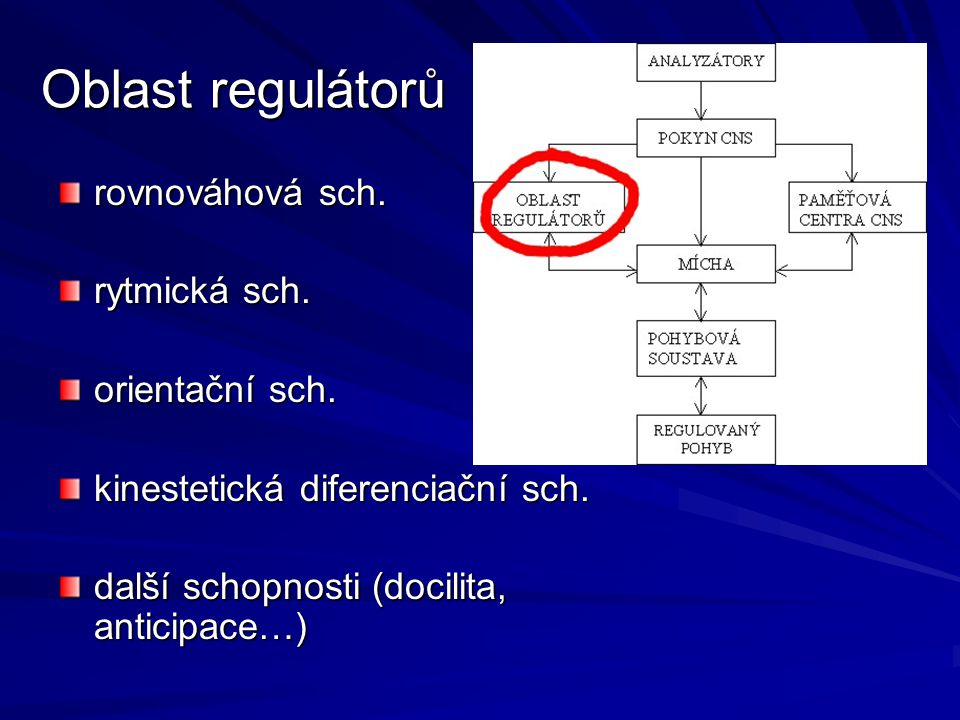 Oblast regulátorů rovnováhová sch.rytmická sch. orientační sch.