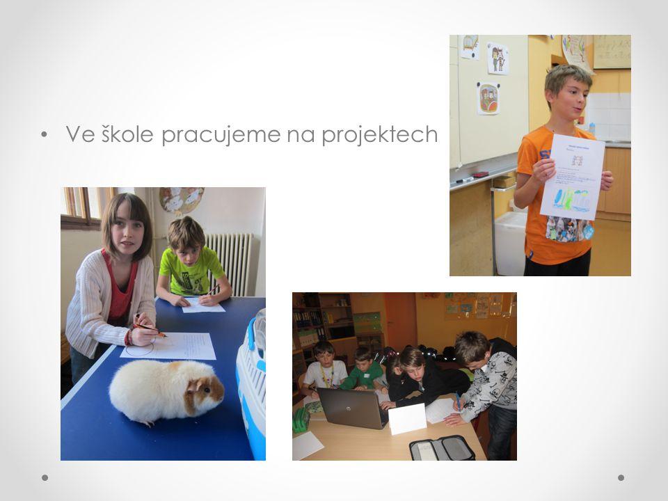 Ve škole pracujeme na projektech