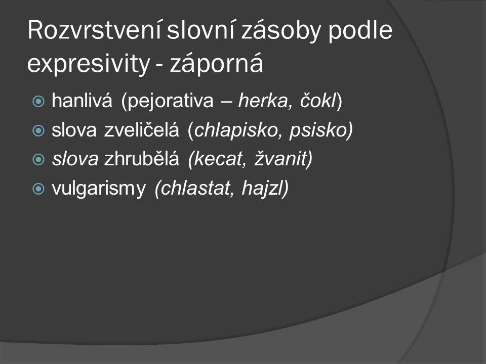 Rozvrstvení slovní zásoby podle časových příznaků  historismy (halapartna, mušketýr)  archaismy (škamna, lučba)  neologismy (smuténka, hamburgerizace)