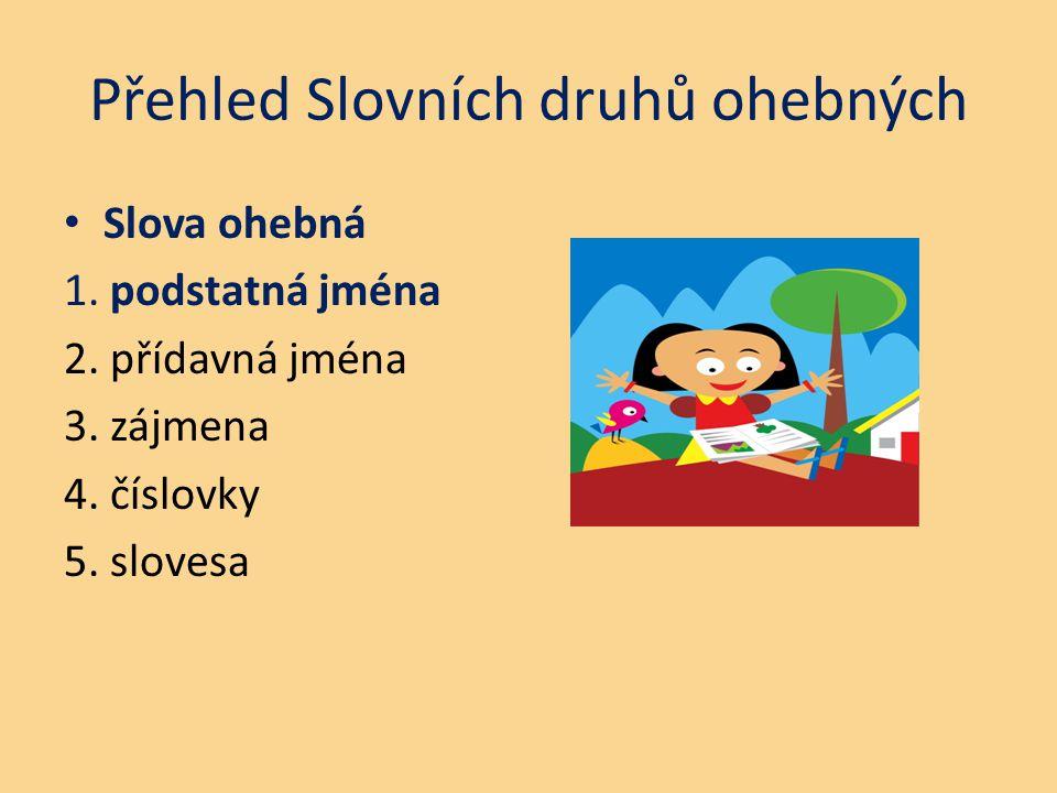 Přehled Slovních druhů ohebných Slova ohebná 1. podstatná jména 2. přídavná jména 3. zájmena 4. číslovky 5. slovesa