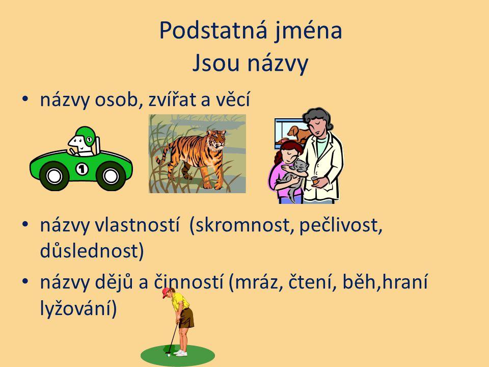 Podstatná jména Jsou názvy názvy osob, zvířat a věcí názvy vlastností (skromnost, pečlivost, důslednost) názvy dějů a činností (mráz, čtení, běh,hraní
