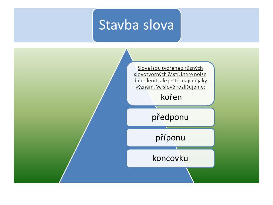 Stavba slova Slova jsou tvořena z různých slovotvorných částí, které nelze dále členit, ale ještě mají nějaký význam. Ve slově rozlišujeme: kořen před