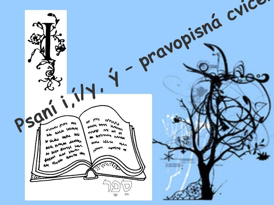 Psaní i,í/y, ý – pravopisná cvičení