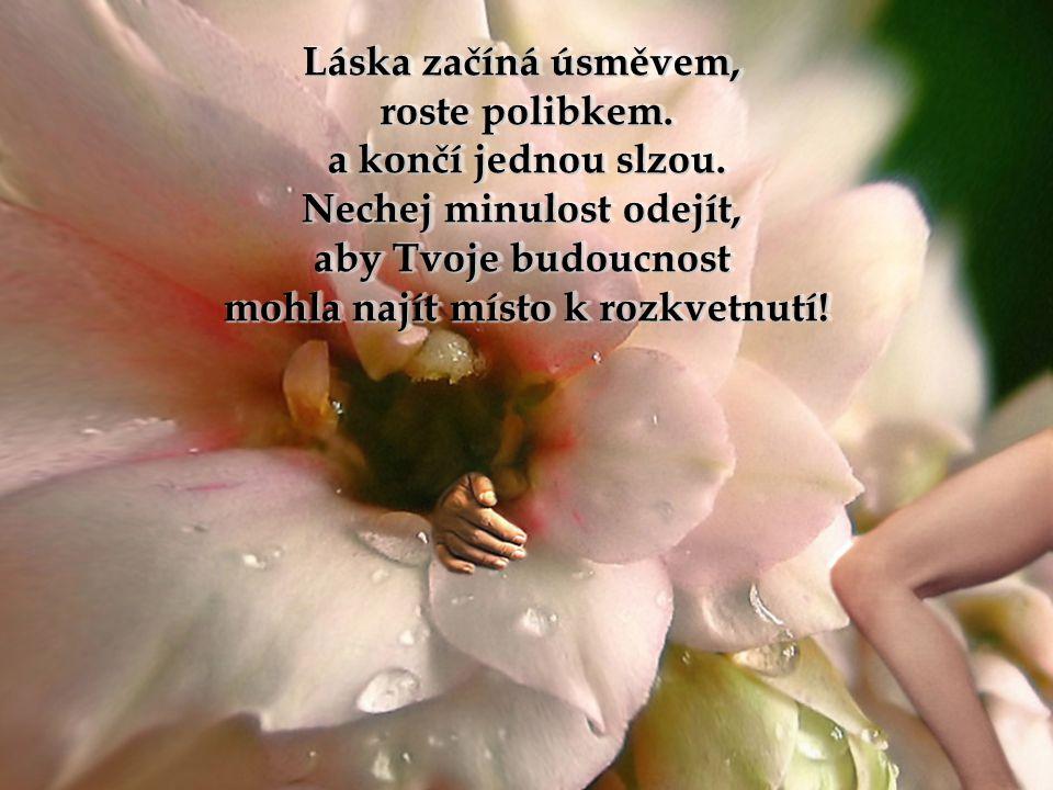 Láska začíná úsměvem, roste polibkem.a končí jednou slzou.