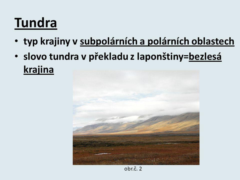 Tundra typ krajiny v subpolárních a polárních oblastech slovo tundra v překladu z laponštiny=bezlesá krajina obr.č.