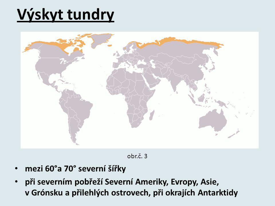 Výskyt tundry mezi 60°a 70° severní šířky při severním pobřeží Severní Ameriky, Evropy, Asie, v Grónsku a přilehlých ostrovech, při okrajích Antarktidy obr.č.