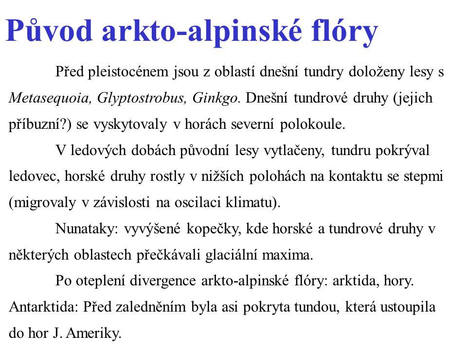 Původ arkto-alpinské flóry Před pleistocénem jsou z oblastí dnešní tundry doloženy lesy s Metasequoia, Glyptostrobus, Ginkgo.