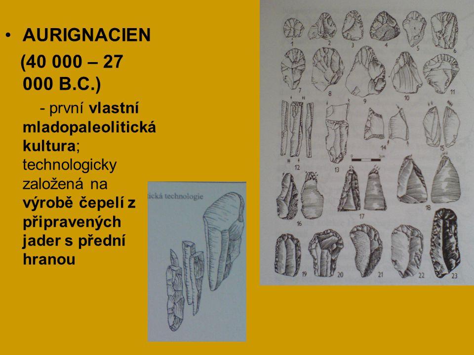 AURIGNACIEN (40 000 – 27 000 B.C.) - první vlastní mladopaleolitická kultura; technologicky založená na výrobě čepelí z připravených jader s přední hr