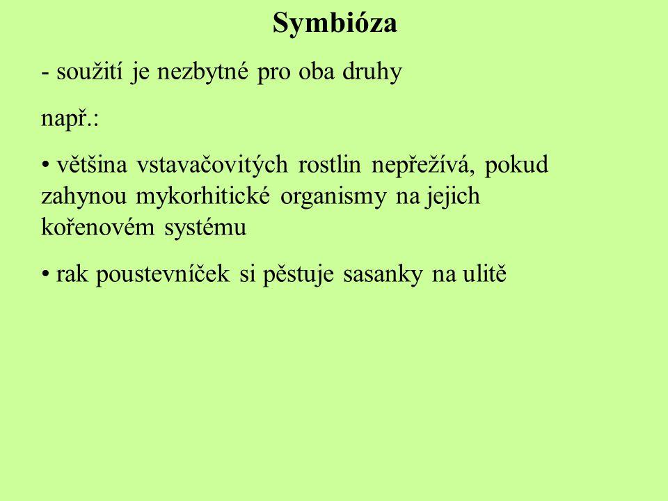 Symbióza - soužití je nezbytné pro oba druhy např.: většina vstavačovitých rostlin nepřežívá, pokud zahynou mykorhitické organismy na jejich kořenovém